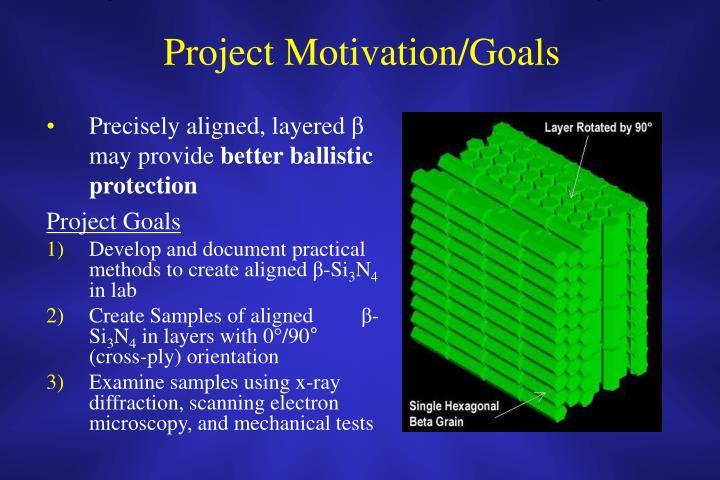 Project Motivation/Goals