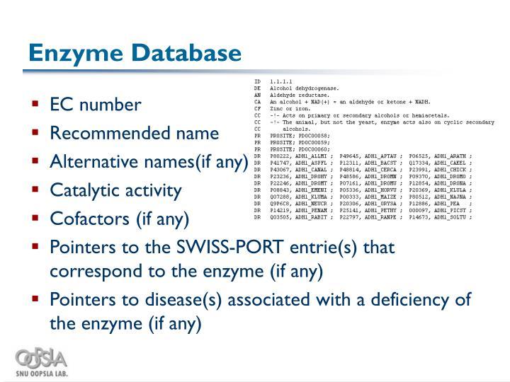 Enzyme Database