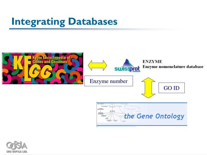 Integrating Databases