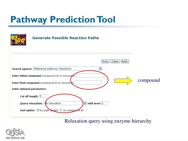 Pathway Prediction Tool