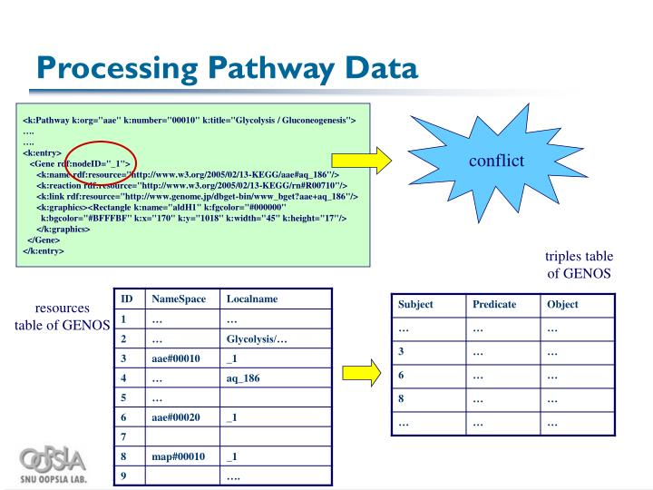 Processing Pathway Data