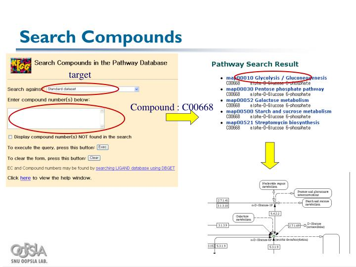 Search Compounds