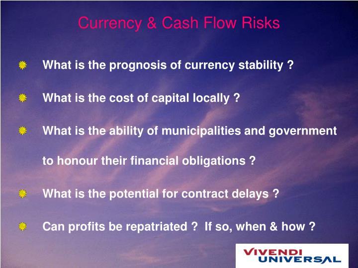 Currency & Cash Flow Risks