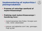 implementering af mykorrhiza i planteproduktion