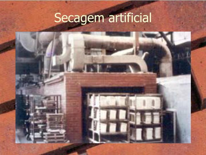 Secagem artificial