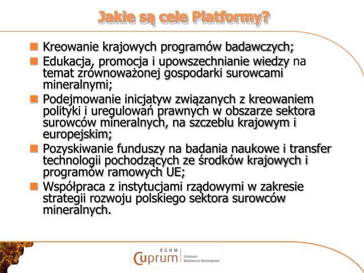 Jakie są cele Platformy?