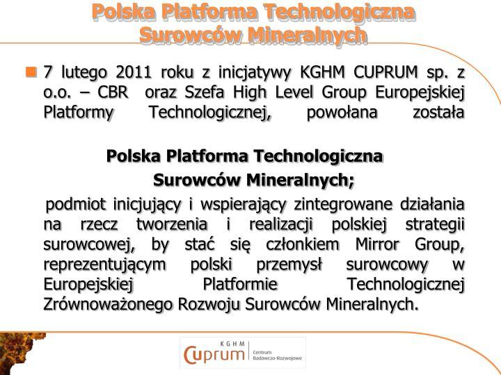 Polska Platforma Technologiczna Surowców Mineralnych