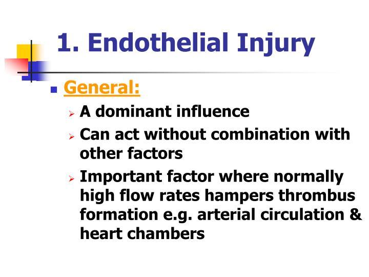 1. Endothelial Injury