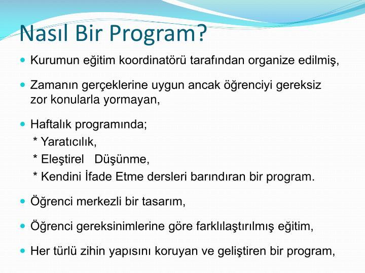 Nasıl Bir Program