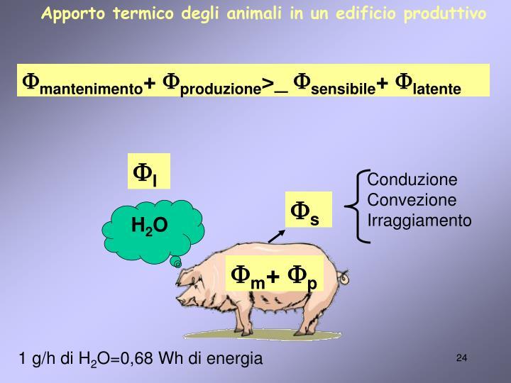 Apporto termico degli animali in un edificio produttivo