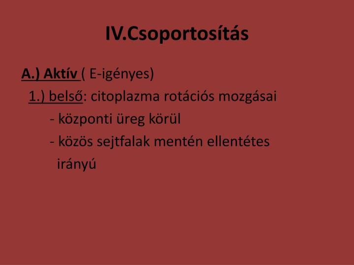 IV.Csoportosítás
