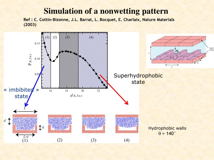 Simulation of a nonwetting pattern