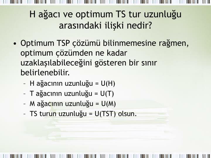 H ağacı ve optimum TS tur uzunluğu arasındaki ilişki nedir?