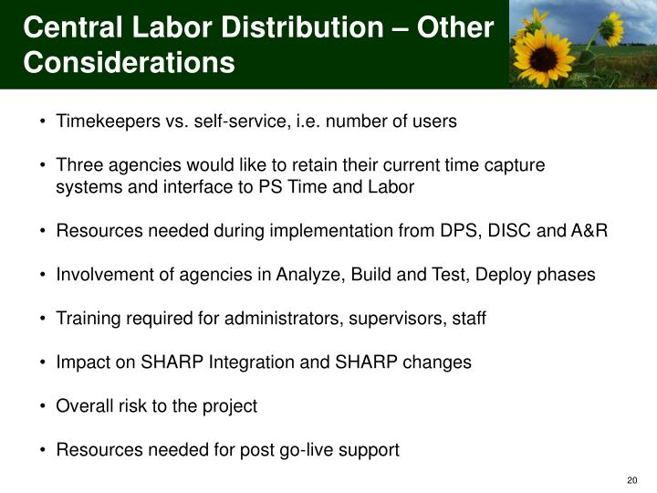 Central Labor Distribution – Other Considerations