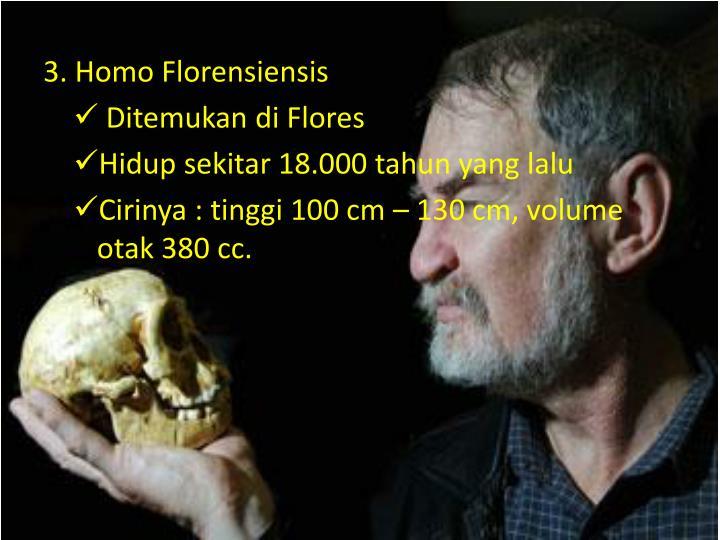 3. Homo Florensiensis