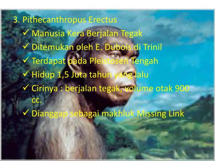 3. Pithecanthropus Erectus
