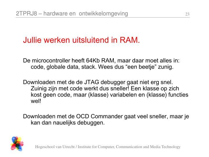 Jullie werken uitsluitend in RAM.