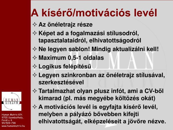 A kísérő/motivációs levél