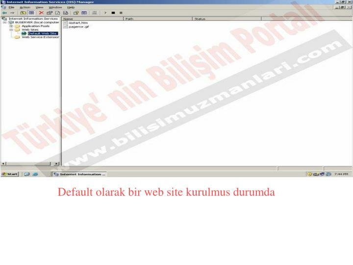 Default olarak bir web site kurulmus durumda