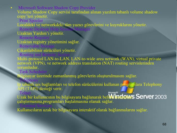 Microsoft Software Shadow Copy Provider