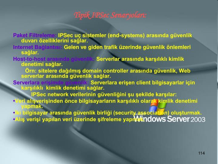 Tipik IPSec Senaryoları: