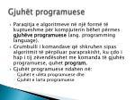 gjuh t programuese