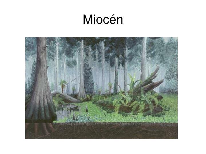Miocén