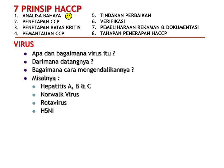 Apa dan bagaimana virus itu ?