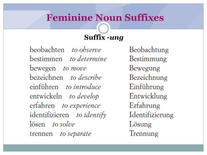 Feminine Noun Suffixes