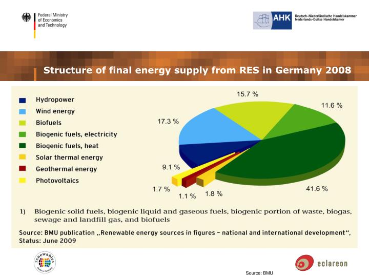 Structure of final energy supply from RES in Germany 2008