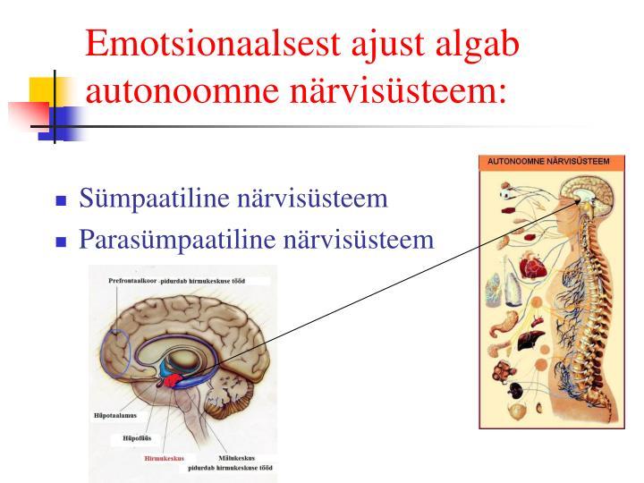 Emotsionaalsest ajust algab autonoomne närvisüsteem: