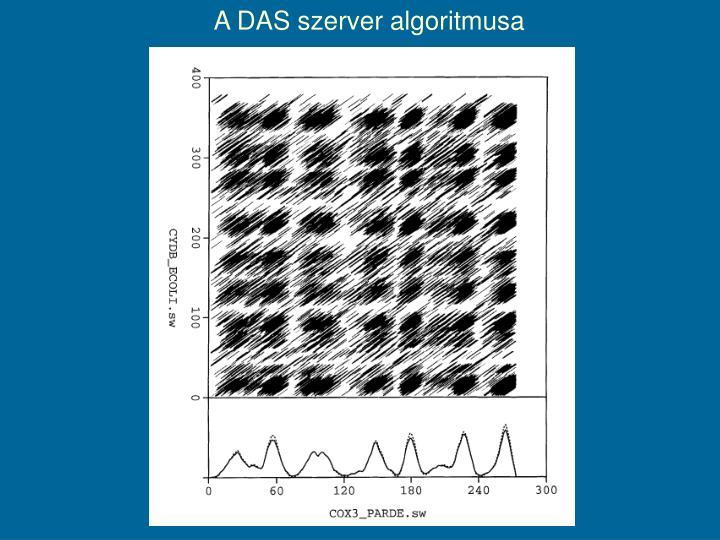 A DAS szerver algoritmusa