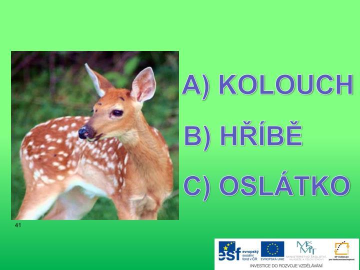 KOLOUCH