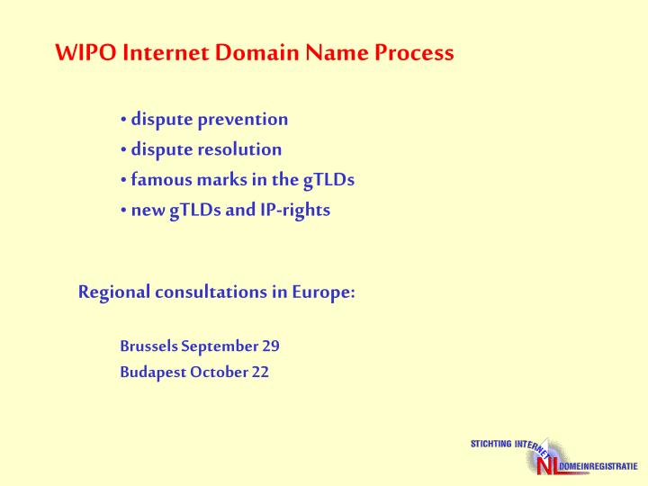 WIPO Internet Domain Name Process