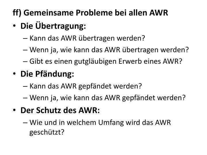 ff) Gemeinsame Probleme bei allen AWR