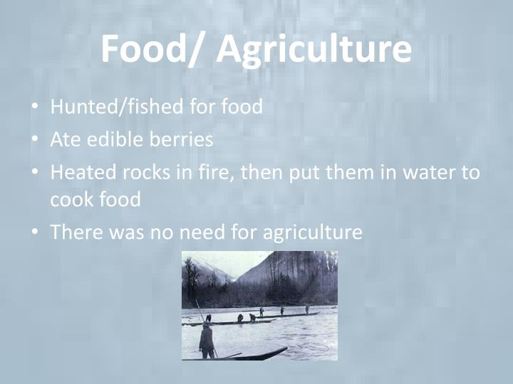 Food/ Agriculture