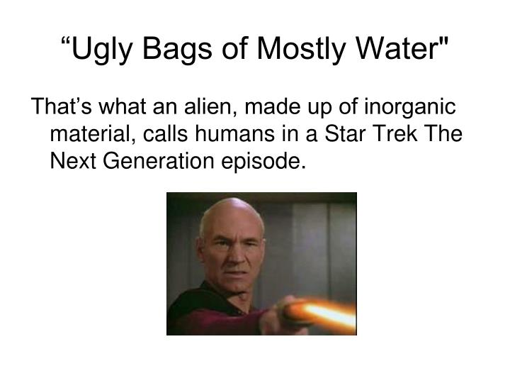 """Ugly Bags of Mostly Water"""