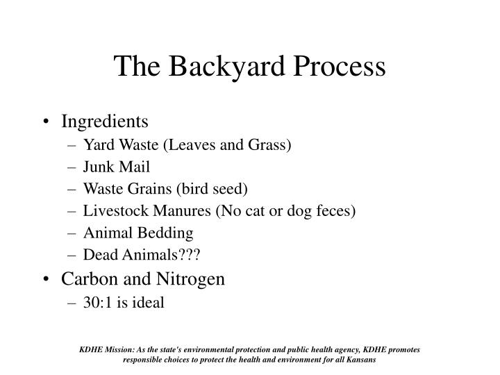 The Backyard Process