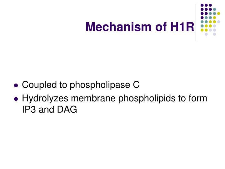 Mechanism of H1R