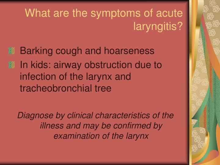 What are the symptoms of acute laryngitis?