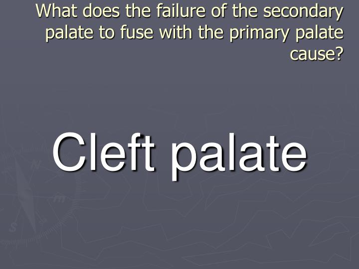 What does the failure of the secondary palate to fuse with the primary palate cause?