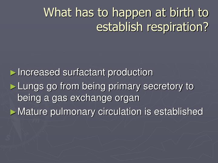 What has to happen at birth to establish respiration?