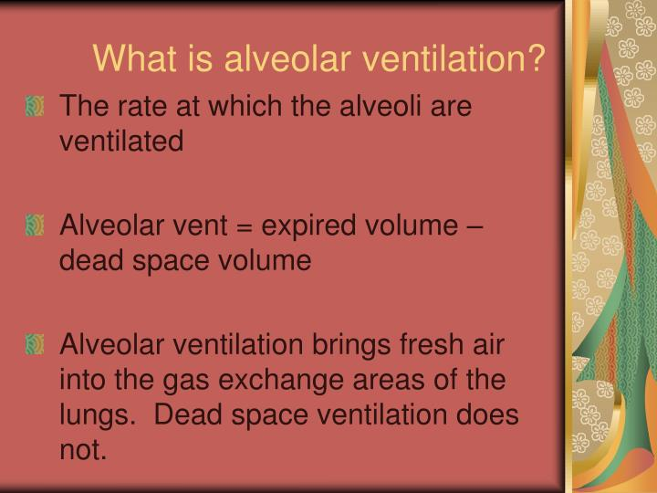 What is alveolar ventilation?