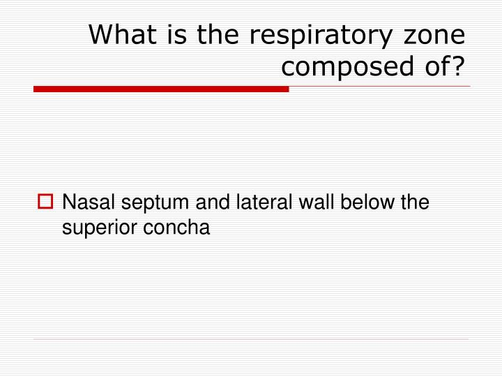 What is the respiratory zone composed of?