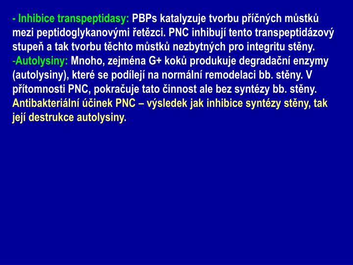- Inhibice transpeptidasy: