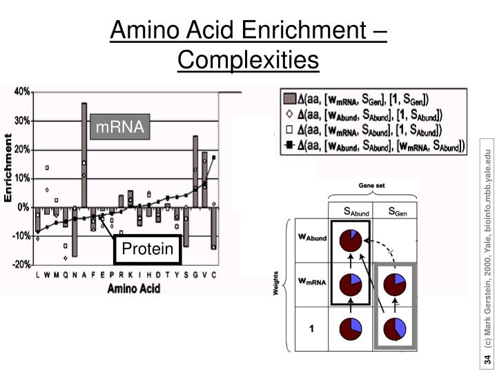 Amino Acid Enrichment –