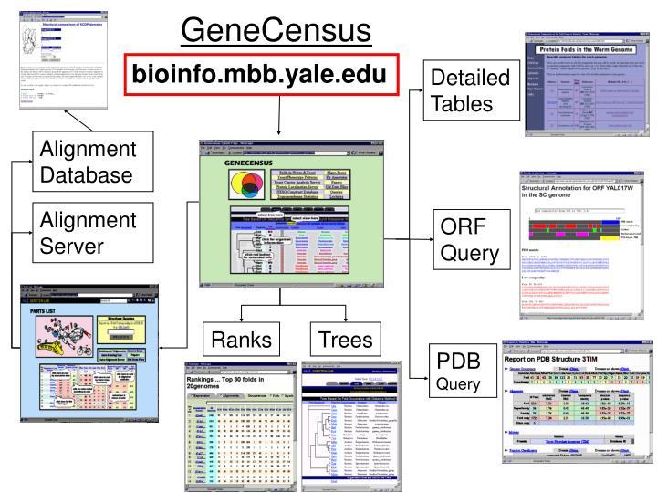 GeneCensus