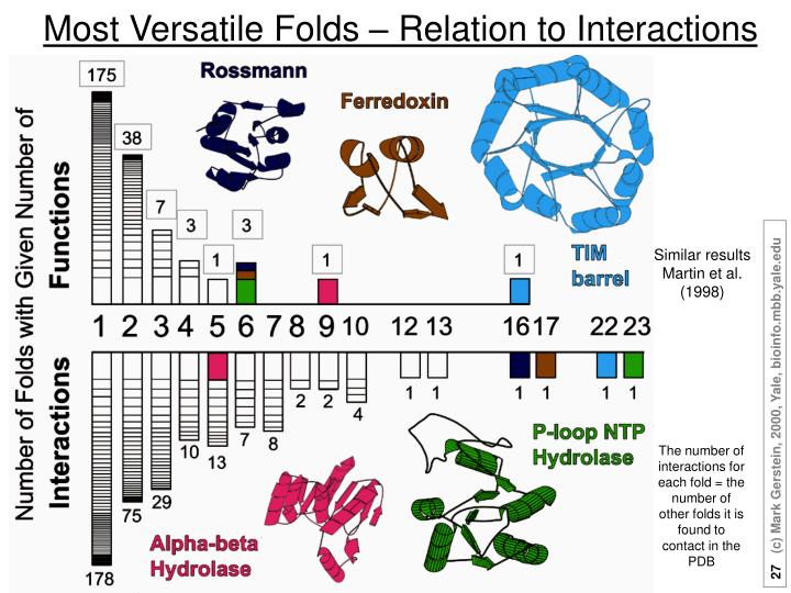 Most Versatile Folds – Relation to Interactions
