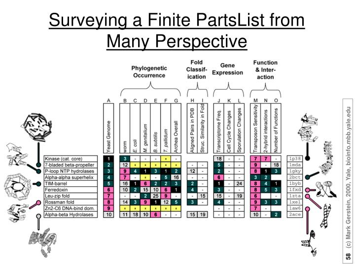 Surveying a Finite PartsList from Many Perspective