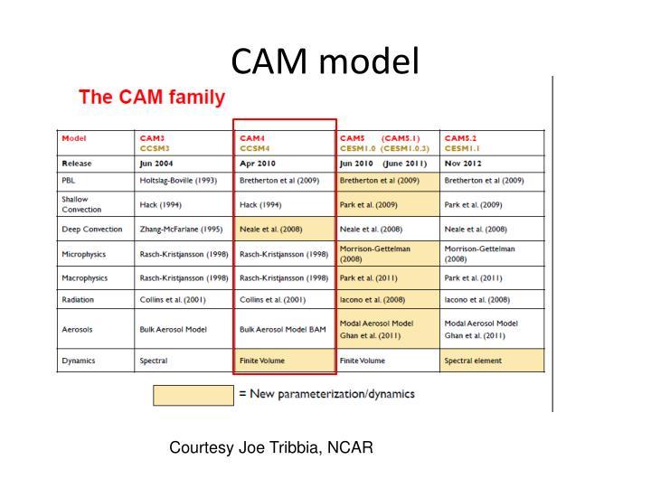 CAM model